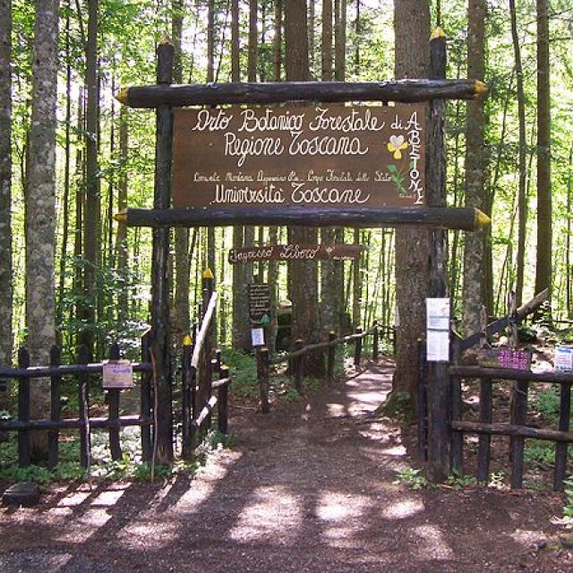 The Abetone forest botanical garden