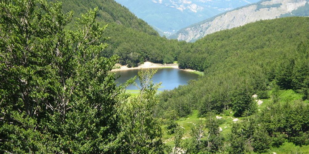 Trips on the lakes: Lake Baccio